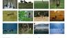 A3 Kalender 'Naturimpressionen 2018'!  vom Natur- und Jagdfotografen Claas Nowak