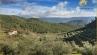Jagdfinca Hochwild, Andalusien zu verkaufen