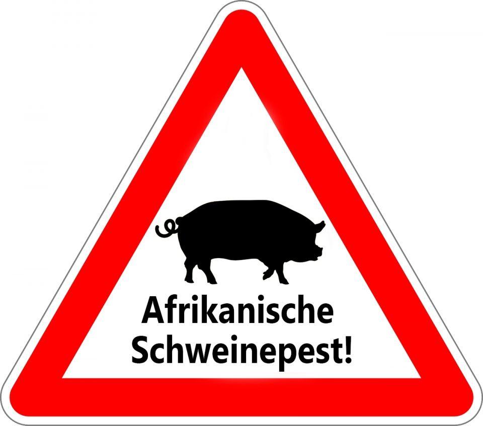 Luxemburg: Afrikanische Wildschweinpest: aktive Bekämpfung und Ursachenforschung