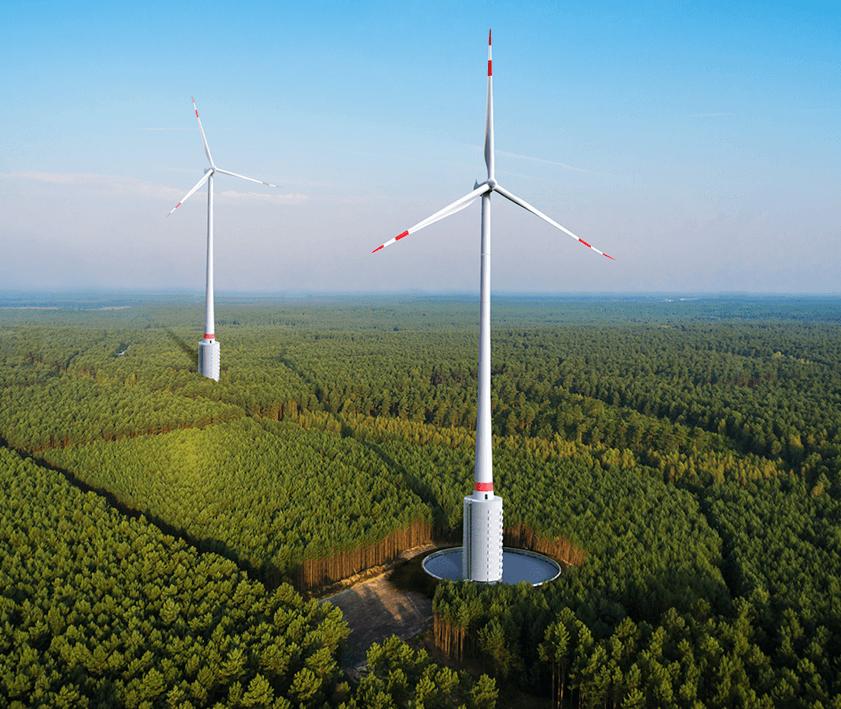 Windkraft-Irre zerstören Deutschlands Märchenwald