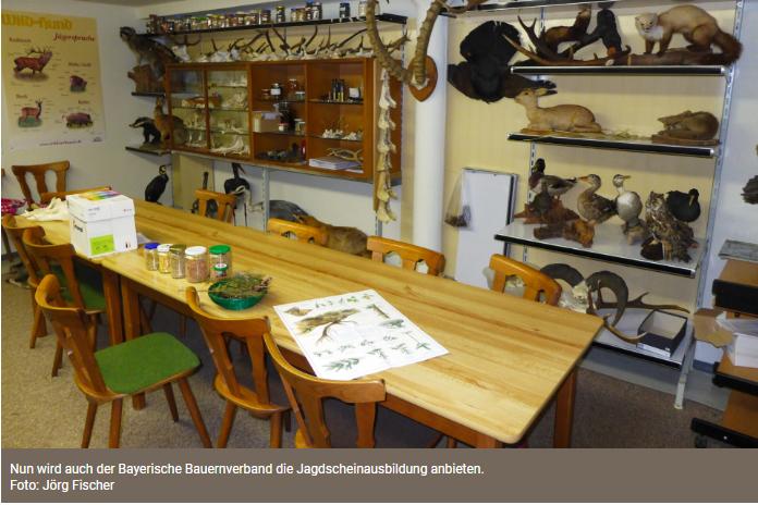 Bayern: Bauernverband steigt in die Jagdausbildung ein