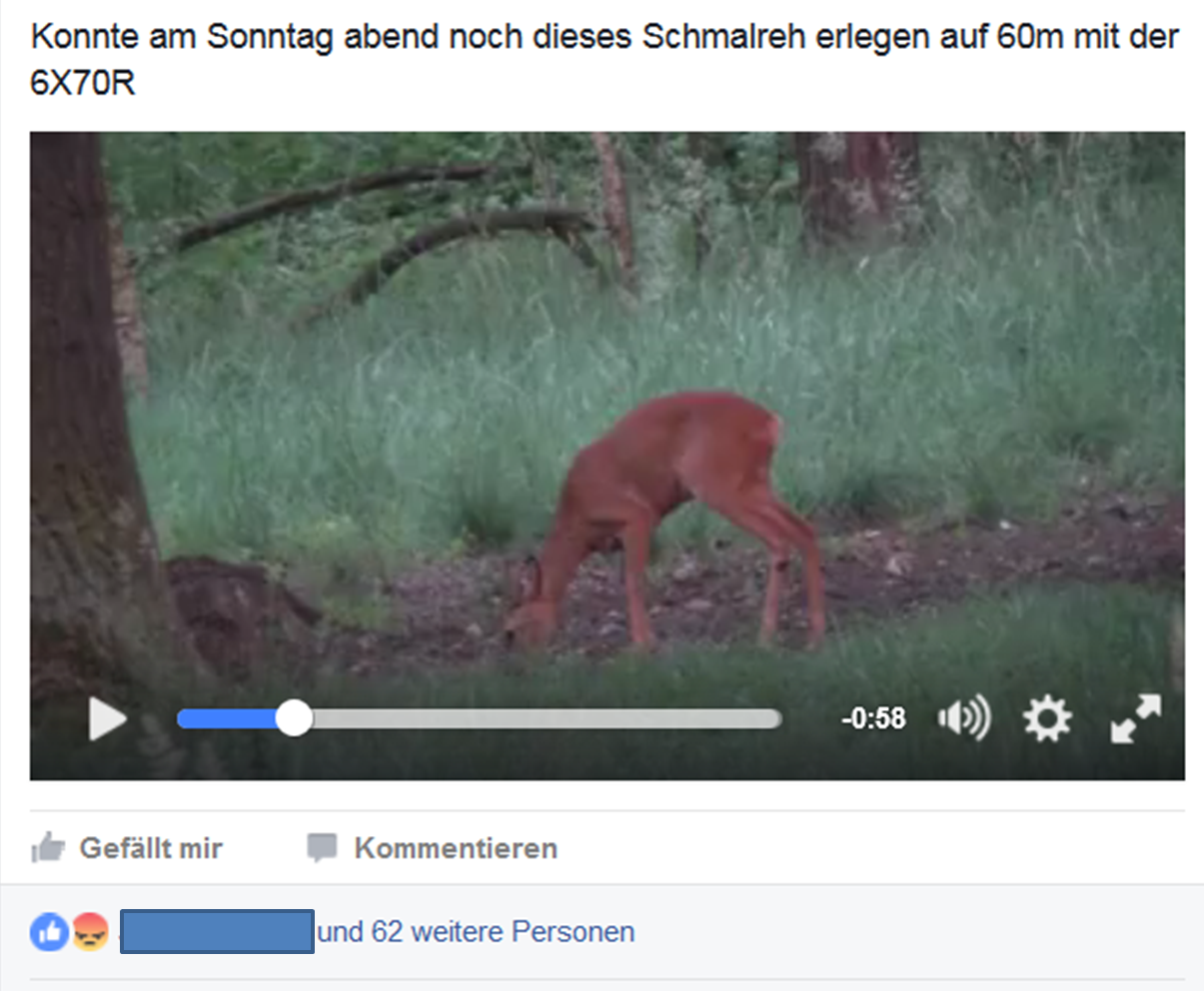 facebook meldung schmalreh video