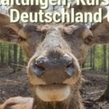 JAGD-Veranstaltungen, Kurse, Seminare in Deutschland und Österreich