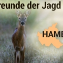 https://www.deutsches-jagdportal.de/portal/images/avatar/group/thumb_14723e5b48c246dad2ddd94a2ec386bd.jpg