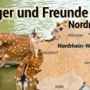 https://www.deutsches-jagdportal.de/portal/images/cover/group/43/thumb_04077e9c24939a0760fbd55343743e79.jpg