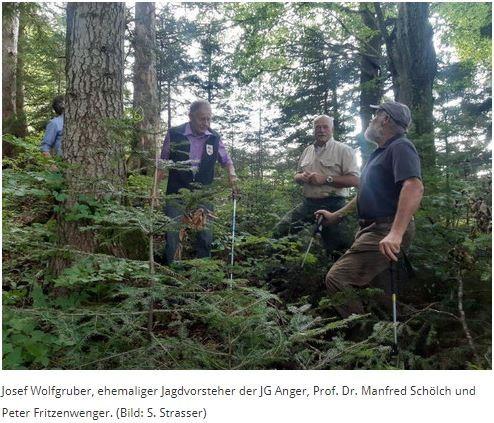 24. August 2021   Herbstexkursion der ANW Südostbayern auf die Fürmann-AlmDie Wetterextreme der letzten Wochen haben wieder deutlich gezeigt, dass wir uns inmitten eines Klimawandels befinden. Derartige Wetterlagen werden sich in Zukunft verstärken und häufiger werden. Fichtenreinbestände, so wie sie in Deutschland noch vielerorts zu finden sind, sind besonders anfällig für Wetterextreme wie Stürme und Dürre. Damit unsere Wälder auch in Zukunft ihre wichtigen Funktionen als Trinkwasserspeicher, Holzlieferant, und ganz besonders als Lebensraum für viele Tiere und Pflanzen erfüllen können, bedarf es eines Umbaus dieser Fichtenreinbestände hin zu artenreichen, stabilen Mischwäldern. Mit diesem wichtigen Thema hat sich die Herbstexkursion der ANW Südostbayern am 20. August 2021 auf der Fürmann-Alm beschäftigt. Nach der Begrüßung durch Peter Fritzenwenger und Hans Praxenthaler machten sich die ca. 50 Teilnehmer auf zu einer Waldbegehung in den Bergwald am Irlberg bei Anger.Am ersten Waldbild angekommen, wo die Teilnehmer einen Bergmischwald im Optimalzustand bewundern konnten, berichtete der ehemalige Jagdvorsteher Josef Wolfgruber, dass hier bereits in den 80er Jahren die Schalenwildbejagung trotz großer Widerstände aus der damaligen Jägerschaft intensiviert wurde. Heute kann man sagen, dass damals alles richtig gemacht wurde. Während vor der Umstellung der Jagd sogar die Fichte verbissen wurde, ist heute eine artenreiche Verjüngung aus Weißtanne, Rotbuche, Fichte und Bergahorn in verschiedenen Altersklassen zu finden.https://www.oejv-bayern.de/aktuelles/aktuelles-2021/210824-anw/