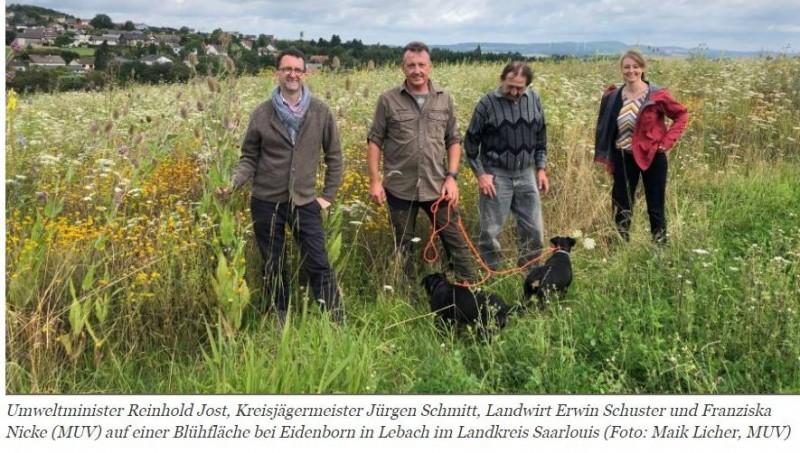 """""""ARTENREICHE KULTURLANDSCHAFT IN SAARLOUIS""""MINISTER JOST: ERFOLGREICHES PROJEKT WIRD FORTGEFÜHRTSeit einigen Jahren ist ein drastischer Rückgang der Population der typischen Tierarten der Feldflur zu beobachten. Betroffen sind insbesondere Rebhuhn, Feldlerche, Fasan und Hase aber auch eine Vielzahl von Insekten, Schmetterlingen und Kleinlebewesen.Um dieser besorgniserregenden Entwicklung entgegenzuwirken haben Jägerinnen und Jäger der Kreisgruppe Saarlouis der Vereinigung der Jäger des Saarlandes (VJS) im Jahr 2017 das Projekt """"Artenreiche Kulturlandschaft im Landkreis Saarlouis"""" ins Leben gerufen, das maßgeblich vom Umweltministerium unterstützt wird. """"Ziel ist es, die Lebensgrundlage der Niederwildbestände und der sonstigen Bodenbrüter und Offenlandbewohner zu verbessern"""", so Umweltminister Reinhold Jost. Das Umweltministerium hat jetzt entschieden, das Projekt, das bis 2021 befristet war, im kommenden Jahr weiter zu unterstützen.https://www.natuerlich-jagd.de/news/artenreiche-kulturlandschaft-in-saarlouis.html"""