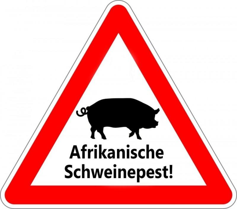 Niedersachsen entschädigt Jäger für Schwarzwildbejagung und Fallwildsuche<br /><br />Politik und Jäger haben sich zum Schutz vor der Afrikanischen Schweinepest (ASP) zum Ziel gesetzt, die Schwarzwildbestände so weit abzusenken, dass die Ausbreitung der Seuche möglichst unterbunden wird.<br /><br />https://www.deutsches-jagdportal.de/portal/index.php/aktuelles/7958-niedersachsen-entschaedigt-jaeger-fuer-schwarzwildbejagung-und-fallwildsuche