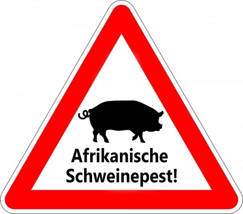 Frankfurt (Oder)  Schweinepest-Geschehen verlagert sich auf Frankfurts WestseiteDas Friedrich-Löffler-Institut hat in Frankfurt (Oder) bisher insgesamt 277 positive Fälle der Afrikanischen Schweinepest (ASP) nachgewiesen. Nach Angaben der Stadtverwaltung liege der Schwerpunkt des ASP-Geschehen derzeit im westlichen Teil Frankfurts - Hohenwalde, Lichtenberg, Rosengarten. Daher mahnt die Stadt, geltende Betretungsverbote unbedingt einzuhalten.Während östlich der B112 Wälder und offene Landschaften auf Wald- und Feldwegen inzwischen wieder betreten werden können, bleibt das Betretungsverbot westlich der B112 weiterhin bestehen.https://www.rbb24.de/studiofrankfurt/beitraege/2021/10/afrikanische-schweinepest-frankfurtoder.html