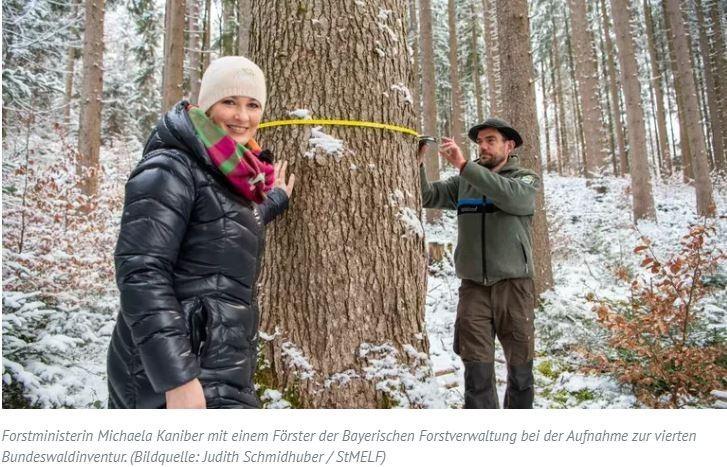 """Bayern  -  Kaniber startet vierte BundeswaldinventurForstministerin Michaela Kaniber gab den Startschuss für eine großflächige Bestandsaufnahme der Wälder in Bayern.Für die vierte Bundeswaldinventur sind zwanzig speziell geschulte Förster der Bayerischen Forstverwaltung im Einsatz, die bayernweit Daten über den Zustand und die Veränderung der Wälder erheben.""""Bayern ist das Land mit der größten Waldfläche in Deutschland. Und damit das so bleibt, bauen wir unsere Entscheidungen auf eine möglichst gute Datenbasis. Alle zehn Jahre sammeln unsere Försterinnen und Förster stichprobenartig Daten über dieses einzigartige Ökosystem. Es ist eine Mammutaufgabe, die nahezu zwei Jahre in Anspruch nimmt. Sie ist aber unglaublich wichtig und wertvoll"""", sagte die Ministerin.Daten aus 10.000 Bäumen https://www.topagrar.com/jagd-und-wald/news/kaniber-startet-vierte-bundeswaldinventur-12526503.html"""