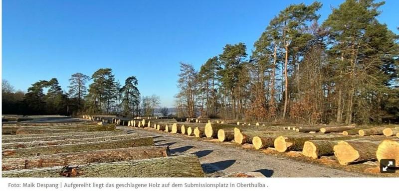 OBERTHULBA   Die besten Preise gibt es für EicheDie Forstbetriebsgemeinschaft Rhön-Saale hat aktuell 437 Mitglieder und bewirtschaftet 9450 Hektar, dazu kommen noch Waldpflegeverträge. Allerdings wurden weniger Festmeter vermarktet, auch der Umsatz war rückläufig.4.8.21   Auf der Rückfahrt einer Dienstreise war der Vorsitzende der Forstbetriebsgemeinschaft Rhön-Saale Mario Götz im Stau steckengeblieben und so übernahm sein Stellvertreter Harald Hofmann kurzfristig und spontan die Leitung der Mitgliederversammlung. Auch wenn weder Wahlen noch Ehrungen anstünden, sei es wichtig, auf dem Laufenden zu bleiben und sich wieder einmal zu sehen, unterstrich Hofmann.Die FBG habe derzeit 437 Mitglieder , die sich aus 415 Privatwaldbesitzer, sieben Waldkörperschaften, zehn Kommunen und dem Landkreis Bad Kissingen zusammensetze. Man bewirtschafte aktuell 9450 Hektar und für rund 7400 Hektar bestünden Waldpflegeverträge, informierte Geschäftsführer Fabian Menzel. Betrug die Vermarktungsmenge 2018 noch 35 000 Festmeter, reduzierte sie sich 2019 auf 29 000 fm und 2020 auf rund 25 000 fm. In ähnlichem Ausmaß sei auch der Umsatz rückläufig. 2018 seien es 2,15 Millionen Euro gewesen, 2019 1,6 und 2020 1,3 Millionen Euro.https://www.mainpost.de/regional/bad-kissingen/die-besten-preise-gibt-es-fuer-eiche-art-10641271