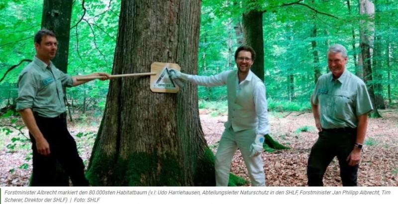 Schleswig-Holstein weist 80.000 Habitatbäume ausvon Mirjam Kronschnabl-Ritz29. Juli 2021    Die Schleswig-Holsteinischen Landesforsten möchten mit ihrem Habitatbaumkonzept die Biodiversität der schleswig-holsteinischen Wälder fördern. Dazu wurden 80.000 Habitatbäume ausgewiesen. Anlässlich der erfolgreichen Umsetzung des Konzepts wurde Forstminister Jan Philipp Albrecht eingeladen.Beim Besuch im Rehberger Wald der Försterei Satrup markierte der Minister symbolisch den 80.000sten-Habitatbaum und schloss feierlich die Habitatbaumausweisung innerhalb der Landesforsten für mehr Biodiversität in Schleswig-Holstein ab.Bestandteil des integrativen Waldnaturschutzeshttps://www.forstpraxis.de/schleswig-holstein-weis-80-000-habitatbaeume-aus/