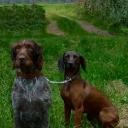 Ajax und Dana